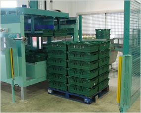 Automatic tray palletising